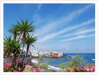 Un'immagine da Puerto de La Cruz, nel nord di Tenerife