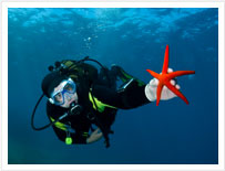 Przeszkolony Divers PADI na Teneryfie z Rozgwiazdy