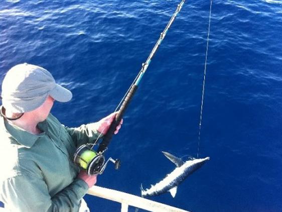 Shark Fishing, Tenerife Excursions