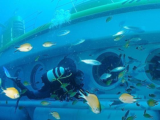 Submarine Safaris, Tenerife Excursions